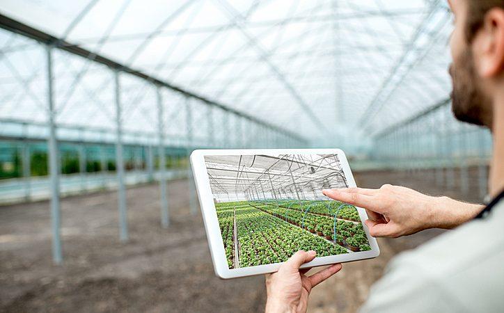 Agricultura digital: como funciona e quais os seus benefícios?