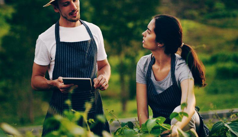 Veja o panorama da agricultura sustentável no Brasil e seus avanços