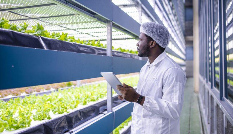 Como a tecnologia pode ajudar nos impactos do clima na agricultura?