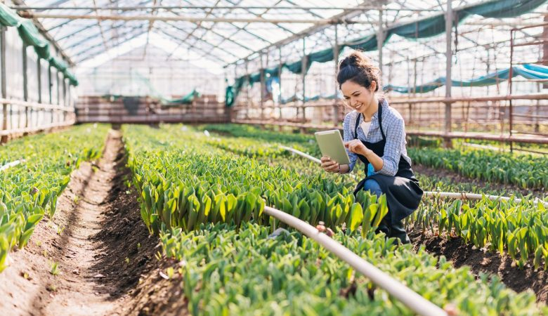 Redução de custos na agricultura: descubra como fazer garantindo a qualidade