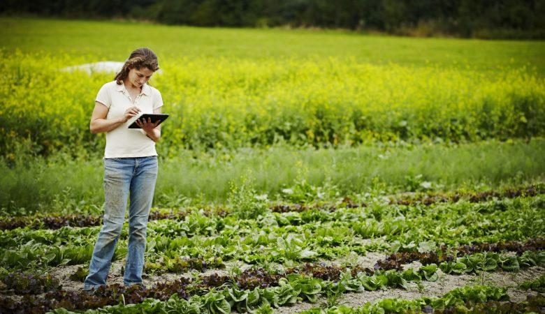 Tecnologia na agricultura: qual a importância e principais inovações?