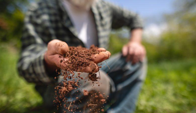 Degradação do solo: descubra quais as principais causas
