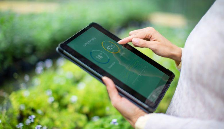 Conheça os 7 benefícios do BI no agronegócio!