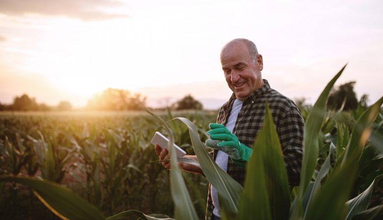 Como aumentar a produtividade na agricultura?