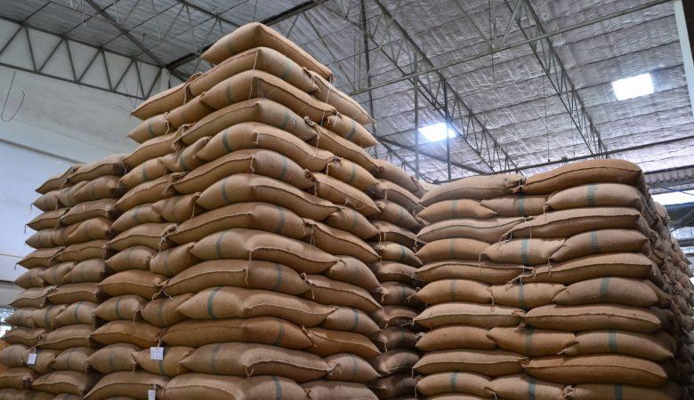 Afinal, qual é a importância da logística no agronegócio? Entenda!