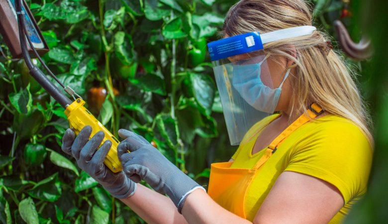 Conheça os 5 principais EPIs utilizados na agricultura