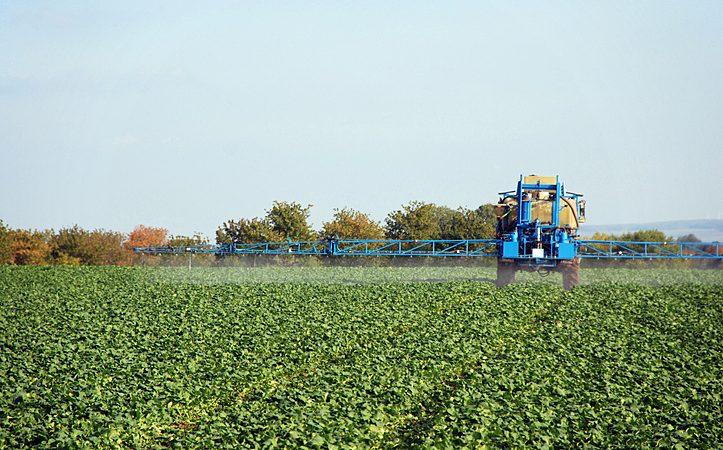 O que são fungicidas sistêmicos e como são classificados?