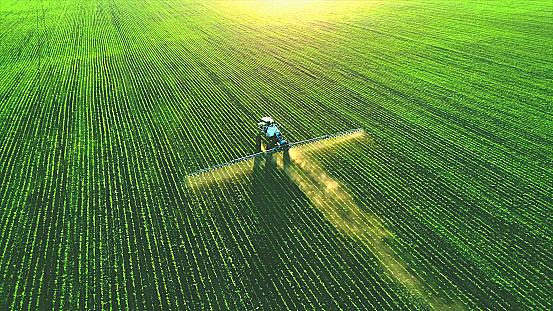 O que é regulagem de semeadora e qual a sua importância?