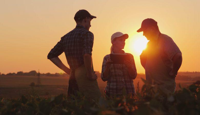5 dicas incríveis para acertar na gestão de propriedades rurais