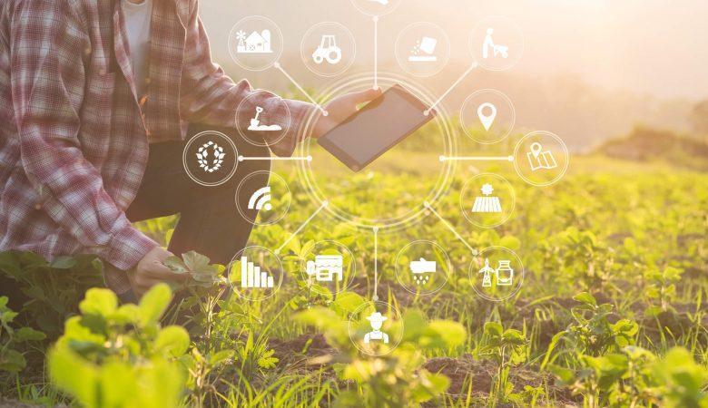 Agricultura 4.0: entenda o que é e como se adaptar a ela