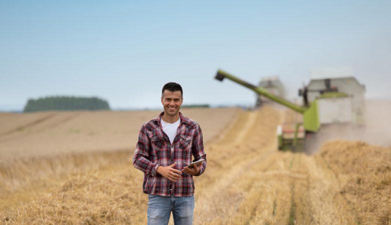 Produção de trigo: 5 dicas que você precisa saber