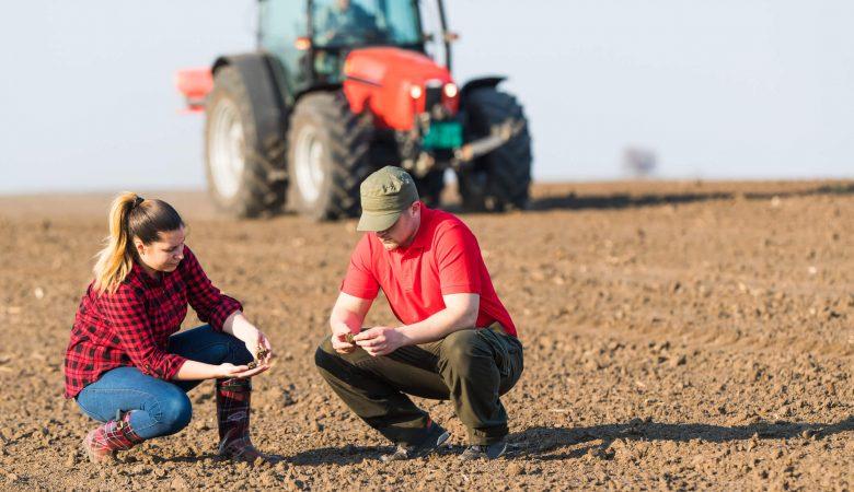Preservação do solo: descubra agora 10 práticas para fazer corretamente