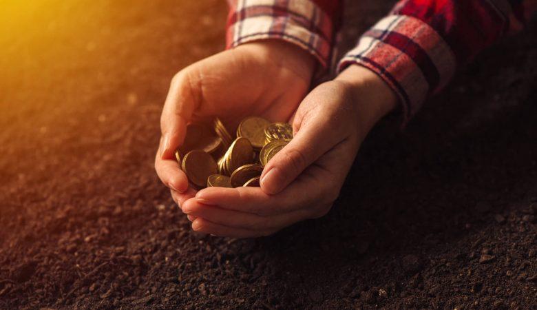 Entenda como funciona o financiamento rural para a agricultura