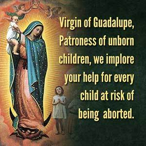 Our Lady of Guadalupe - Protectress of the Unborn