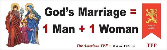 God's Marriage = 1 Man + 1 Woman Banner