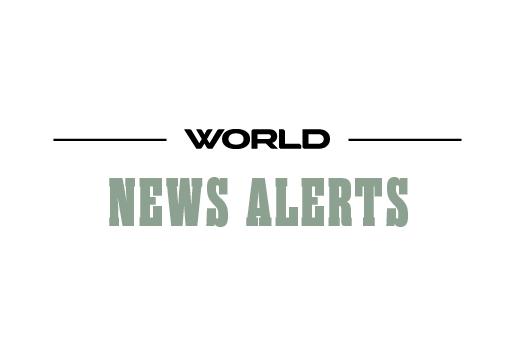 News Alerts Image