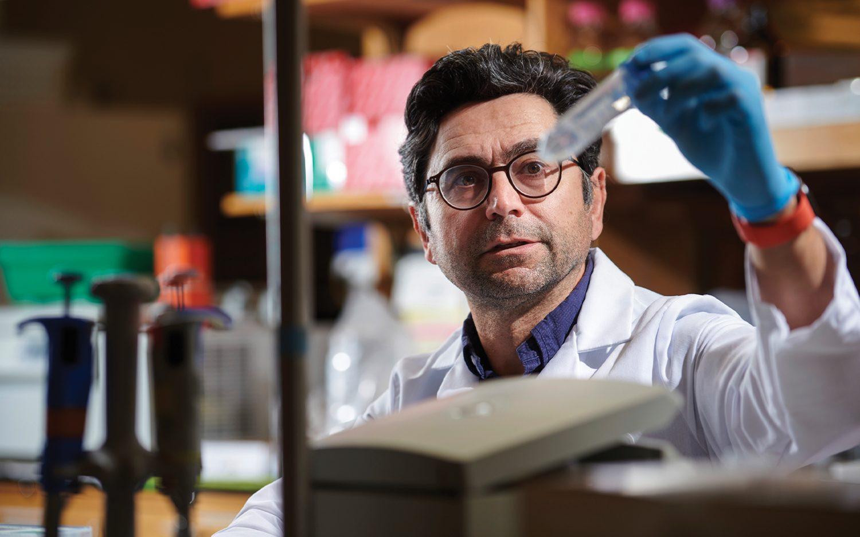 U.S. scientists take Nobel