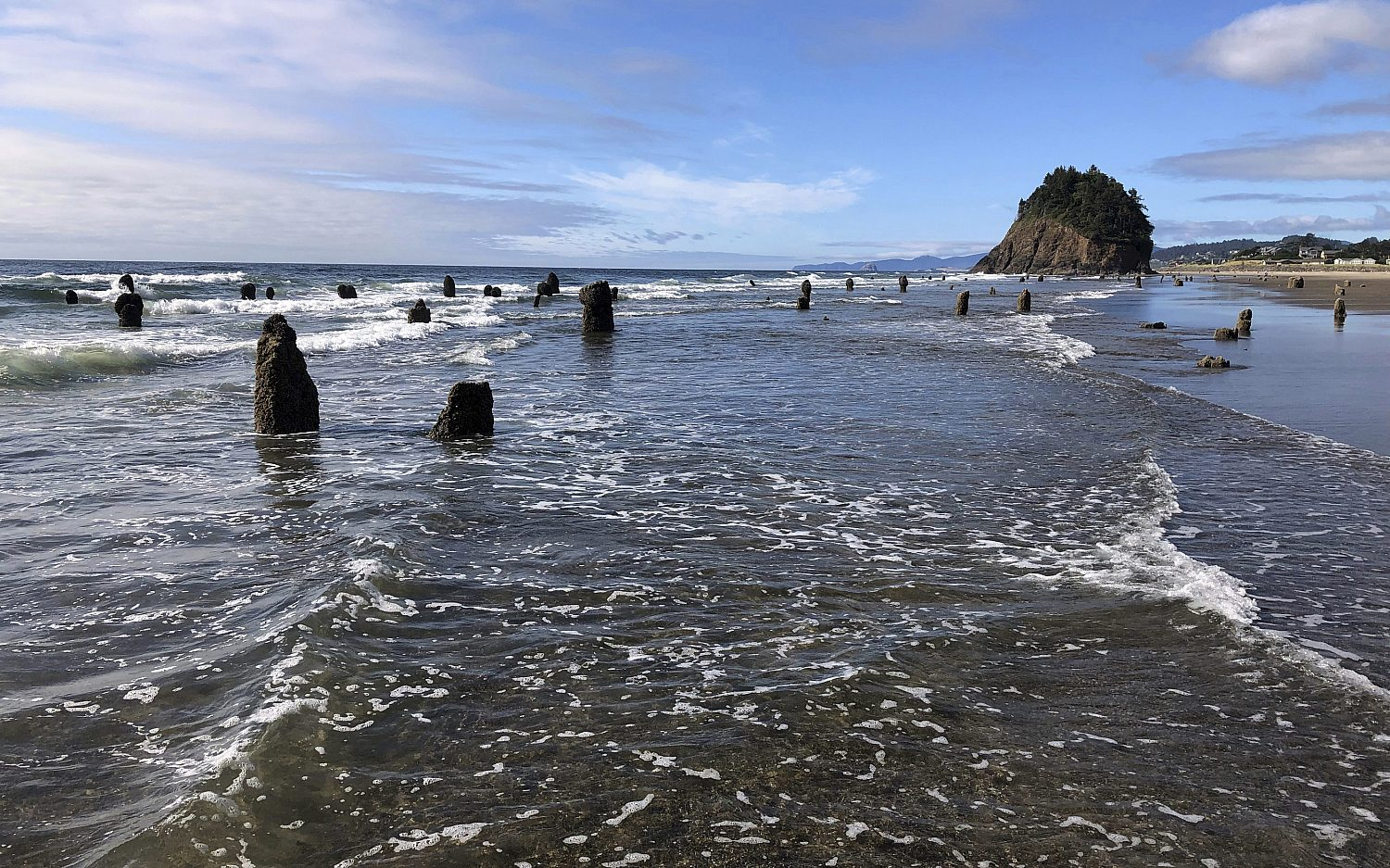 The Pacific Northwest's suffocating ocean
