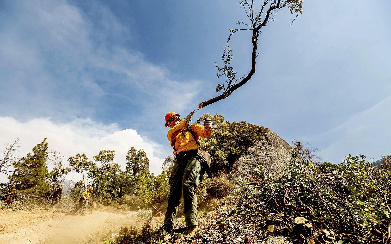 Blazes threaten California giant sequoias