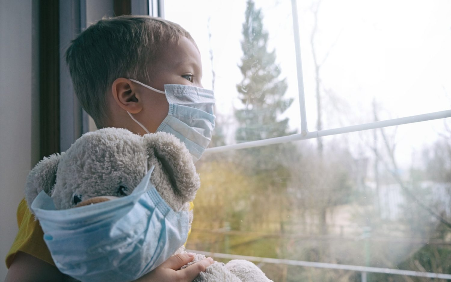 Fostering in a pandemic