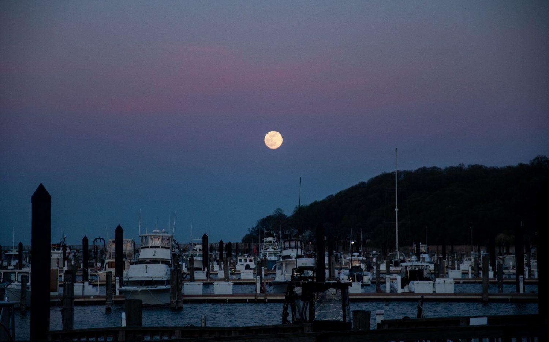 The moon wobble