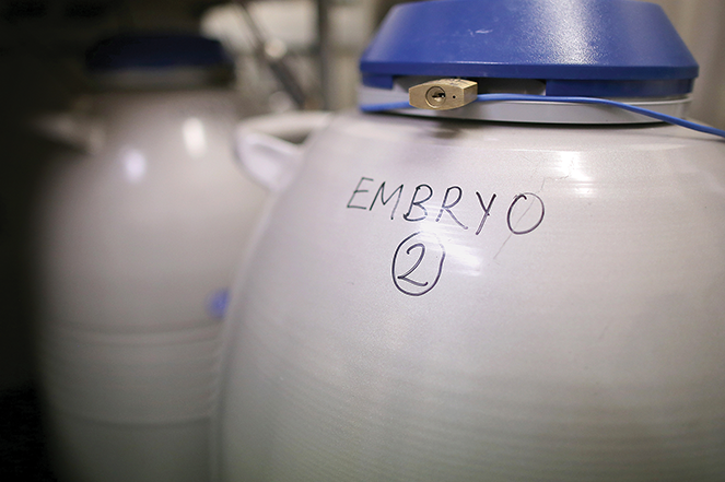 Embryos are frozen and stored at Birmingham Women's Hospital fertility clinic in Birmingham, England.