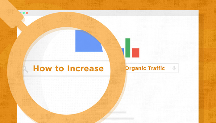 15 SEO Tips to Increase Organic Traffic to Your Website